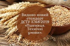 10 червня набирає чинності новий стандарт на пшеницю