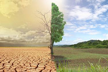 Міжнародна стандартизація: новий стандарт ISO допоможе адаптуватися до змін клімату