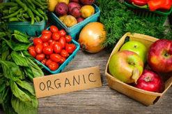 Відсьогодні вводяться нові вимоги до органічного виробництва, обігу та маркування органіки